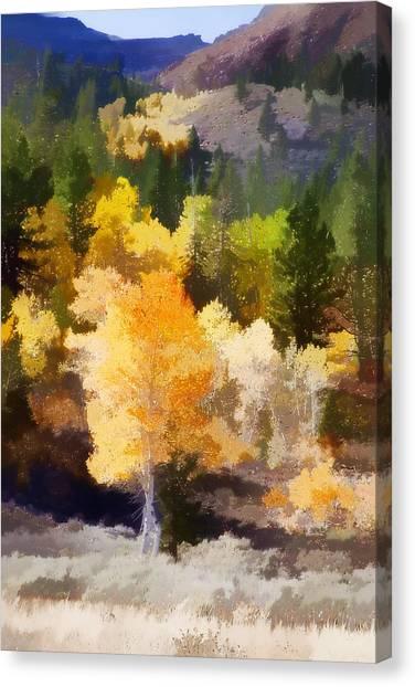 Lake Tahoe Canvas Print - Fall In The Sierra Iv by Carol Leigh