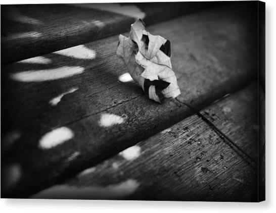 Canvas Print featuring the photograph Fall Leaves Iv by Kelly Hazel