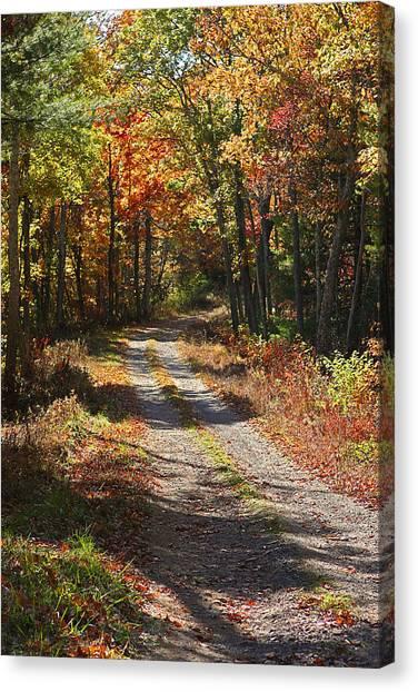 Fall On The Wyrick Trail Canvas Print