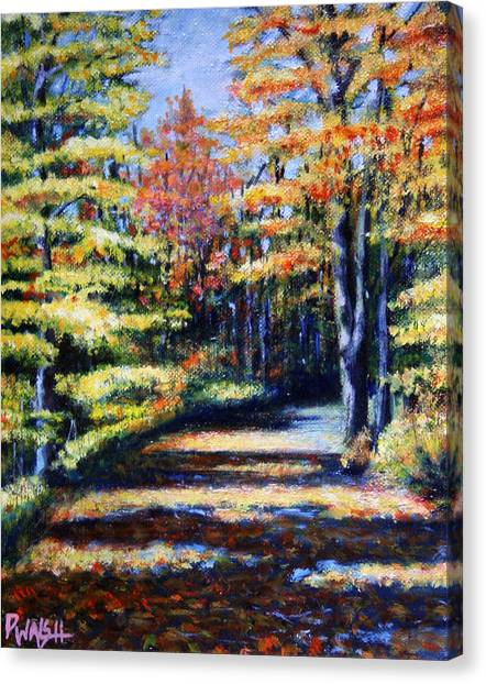 Forest Paths Canvas Print - Fall Path by Paul Walsh