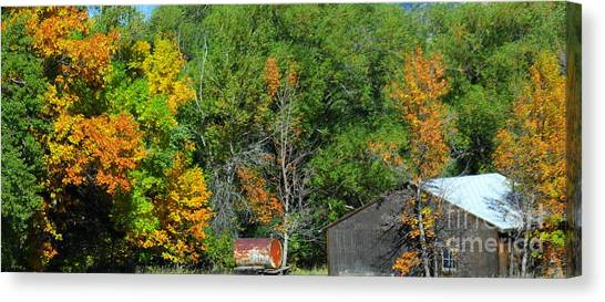 Fall Canvas Print by Patrick  Short