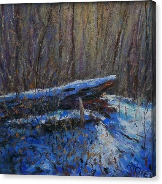 Fallen Wood In Winter Canvas Print by Bob Richey