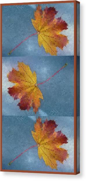 Falling Autumn Leaves Canvas Print