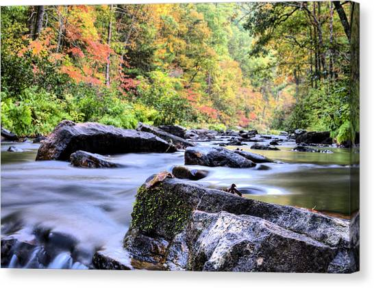 Falling Into Autumn Canvas Print by JC Findley