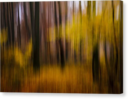 Falling Yellow Canvas Print