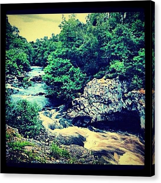 Salmon Canvas Print - #falls #river #shin #stream #waterfall by Toonster The Bold