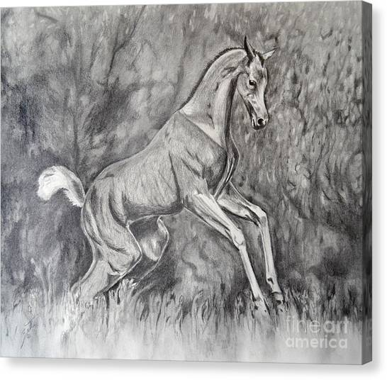 Fancifilly Canvas Print