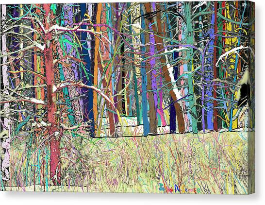 Fantastic Forest Canvas Print