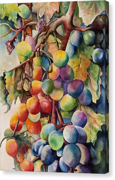 Fantasy Grapes Canvas Print