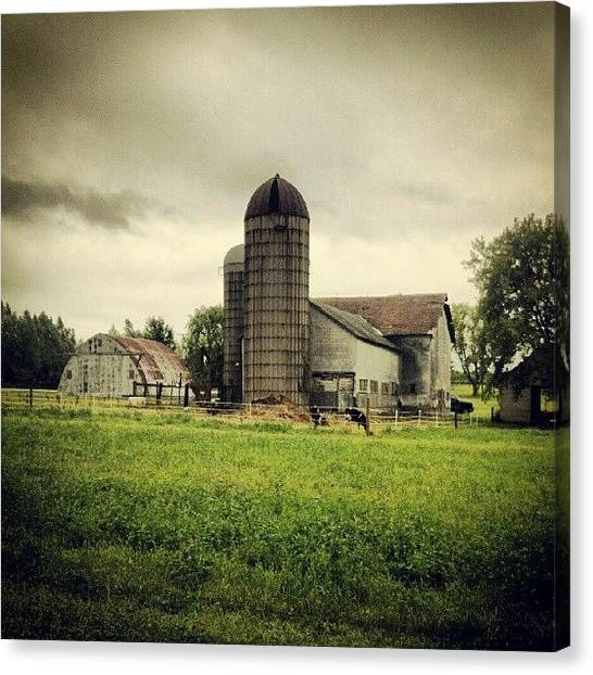 University Of Illinois Canvas Print - #farm #barn #cow #midwest by Bryan P