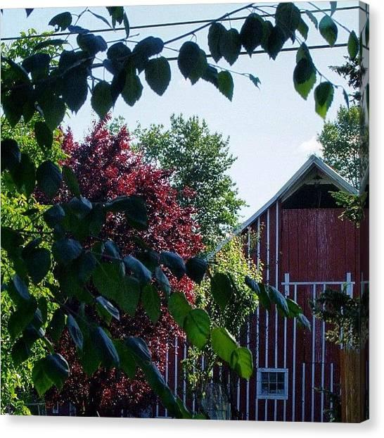 Farmhouse Canvas Print - #farmhouse View From My #backyard by Art Rocha