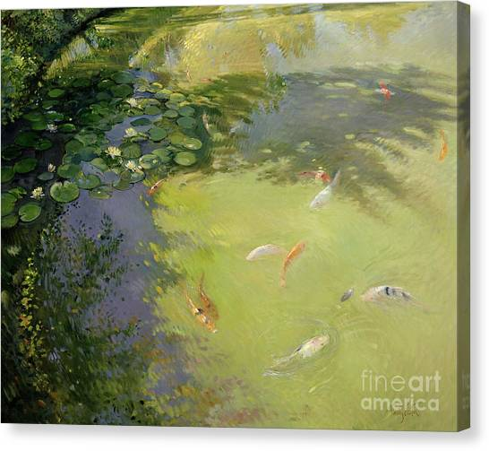 Goldfish Canvas Print - Featherplay by Timothy Easton