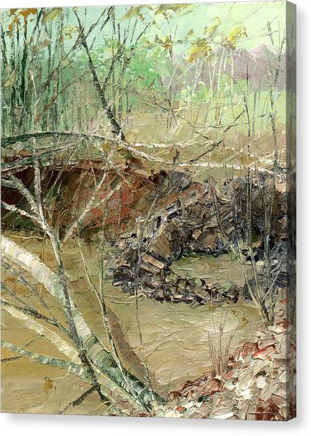 February Stream Canvas Print