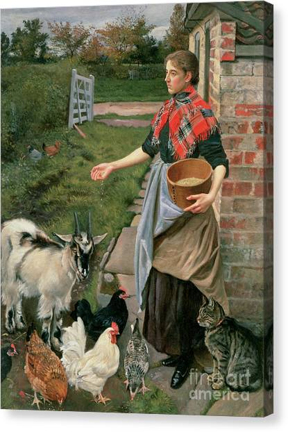 Chicken Farms Canvas Print - Feeding The Chickens by William Edward Millner