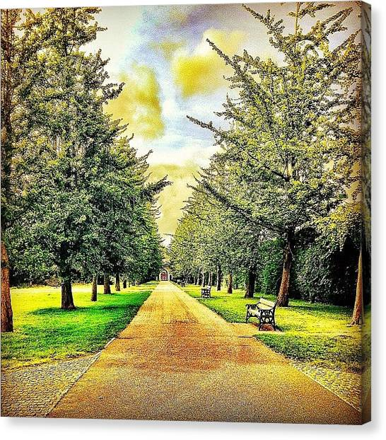 Pathway Canvas Print - Feel Like Walking With Me? #vintage by Elbashir Idris
