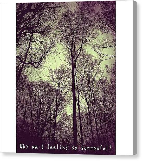 Storks Canvas Print - Feels Like Empty Heart And Empty Soul by Melanie Stork