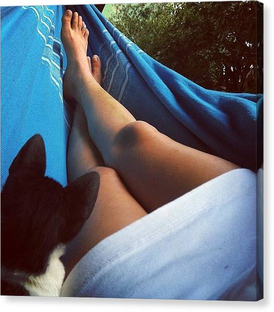 Feet Canvas Print - #feet #cat #relax #revelarfloripa by Avatar Pics