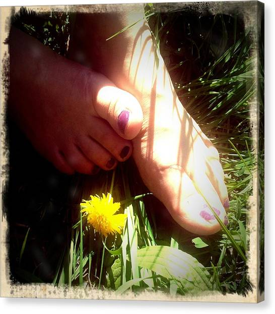 Feet Canvas Print - Feet In Grass - Summer Meadow by Matthias Hauser