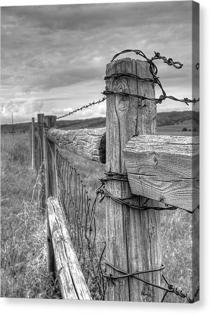 Fence And Wire Canvas Print