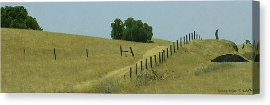 Field Fence Canvas Print