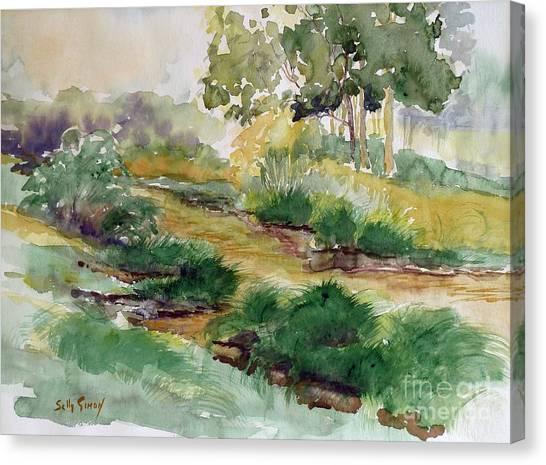 Field Of Streams Canvas Print