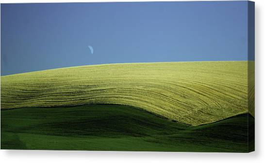 Fields And Quarter Moon Canvas Print by Dale Stillman