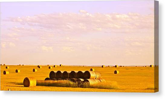 Fields Of Plenty Canvas Print