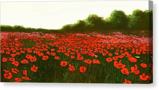 Fine Art Oil Painting Poppies Emerald Isle Canvas Print