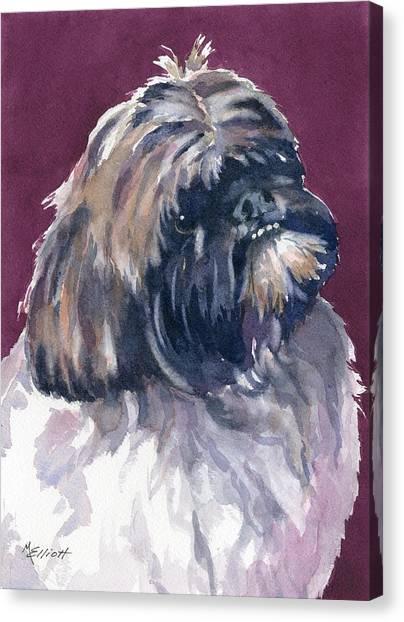 Shih Tzu Canvas Print - Finnigan by Marsha Elliott