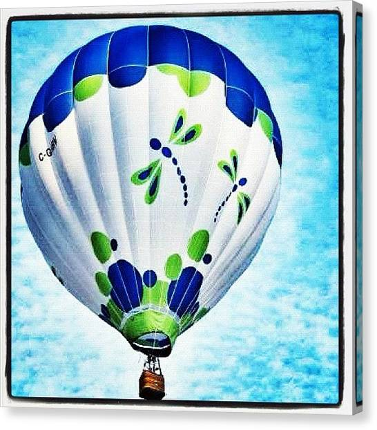 Hot Air Balloons Canvas Print - Firefly by Laura Douglas