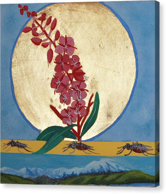 Fireweed In Summer Canvas Print by Amy Reisland-Speer