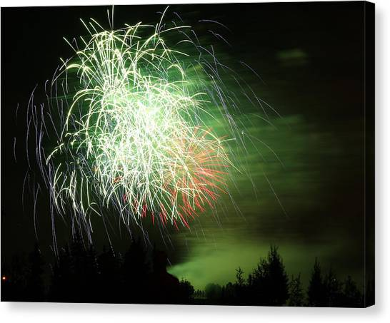 Fireworks 2 Canvas Print by Donna Barker