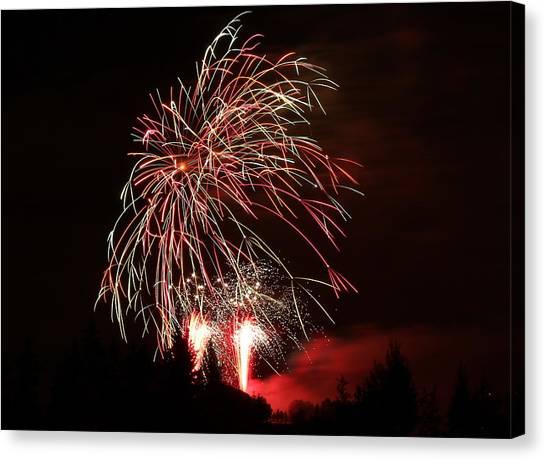 Fireworks 4 Canvas Print by Donna Barker
