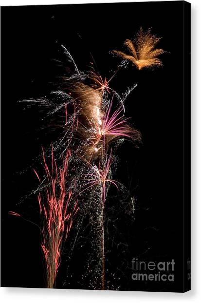 Fireworks Canvas Print by Cindy Singleton
