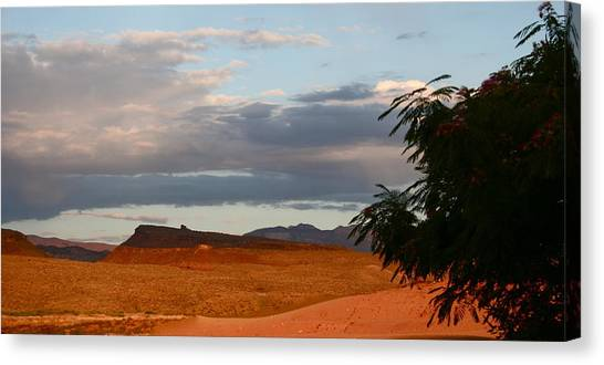First Desert Light Canvas Print