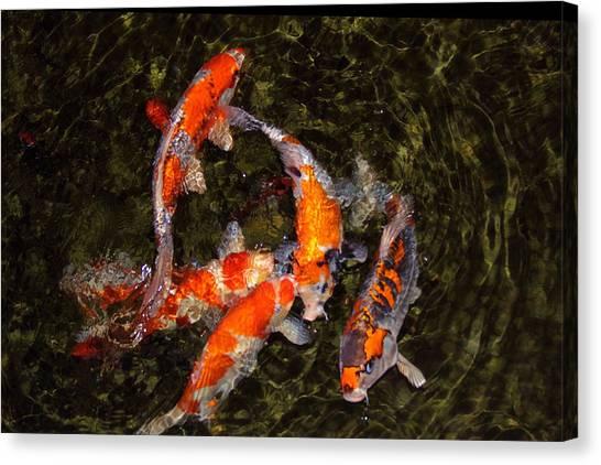 Fish Game Canvas Print