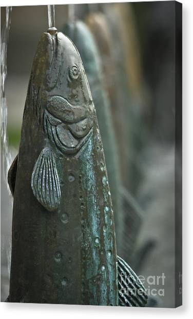Fish Up Canvas Print by David Taylor