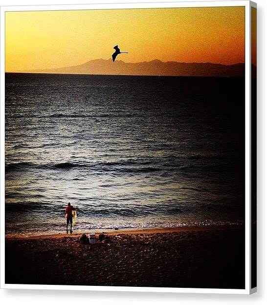 Fishing Canvas Print - Fishing In Vallarta by Natasha Marco