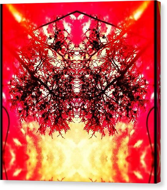 Flames Canvas Print - Flaming by Beatrice Looi