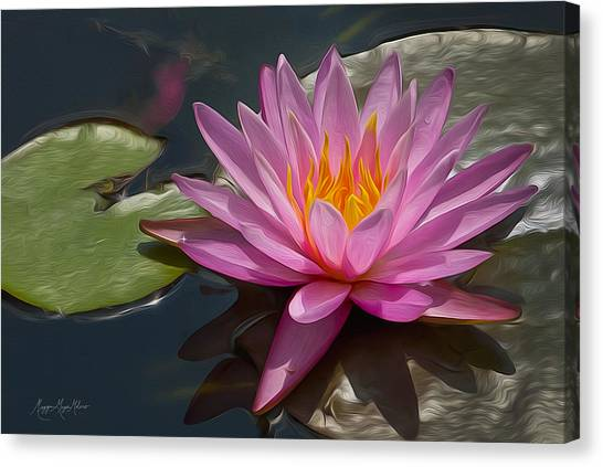 Flaming Waterlily Canvas Print