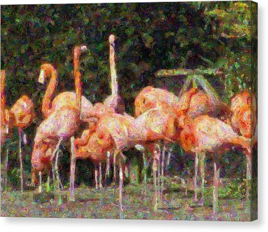 Flamingo's Canvas Print by Fred Whalley