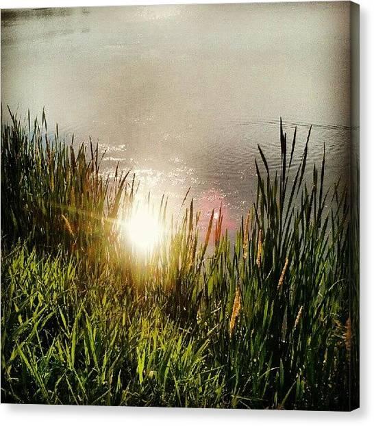 Marines Canvas Print - Flare by Marine Duguay-Baril