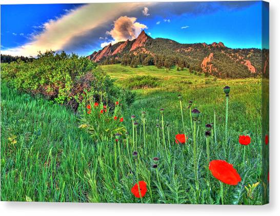University Of Colorado Canvas Print - Flatirons And Poppies by Scott Mahon