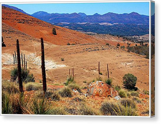 Flinders Ranges Hucks Lookout Canvas Print by Patricia Tapping