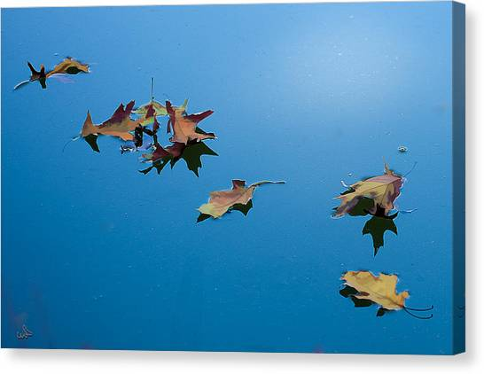 Floating On The Sky Canvas Print