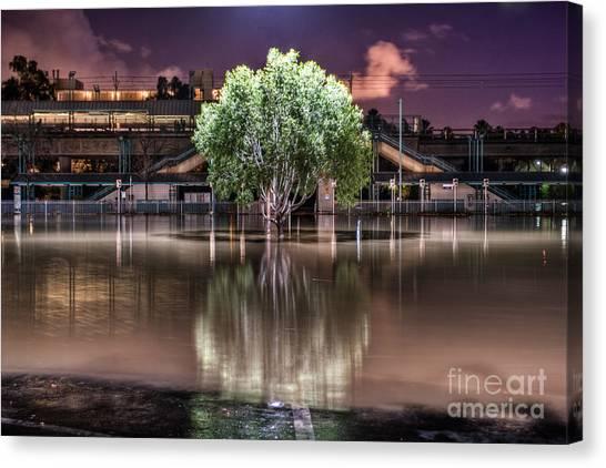 Flooded Tree Canvas Print