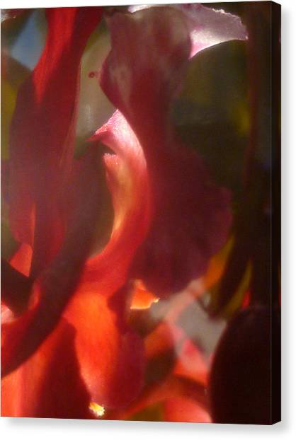 Floral Flamenco Canvas Print