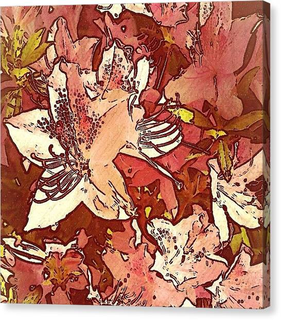 Foxes Canvas Print - Florals by Rachel Fox Burson