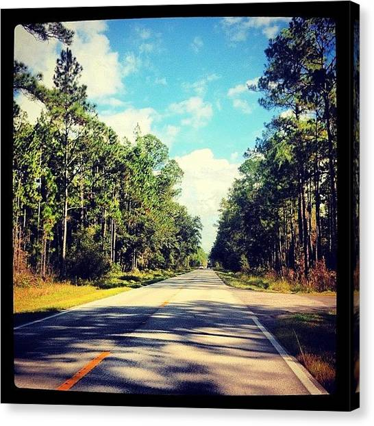 Everglades Canvas Print - #florida #everglades #road #trees #blue by Bart Pieters