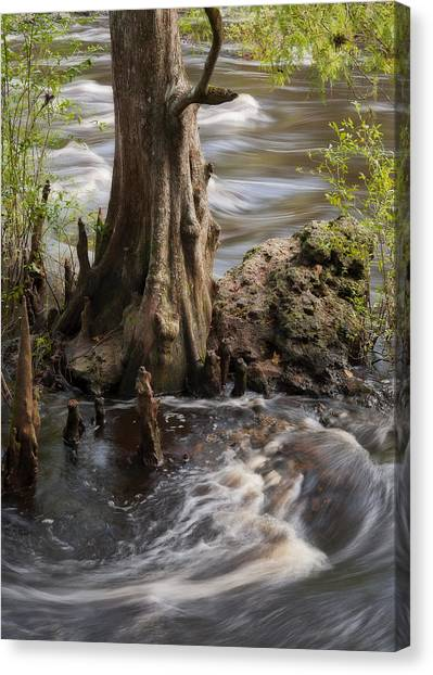 Florida Rapids Canvas Print